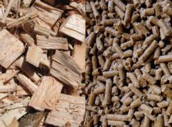 23 mai - 1ère journée nationale du bois-énergie à Paris